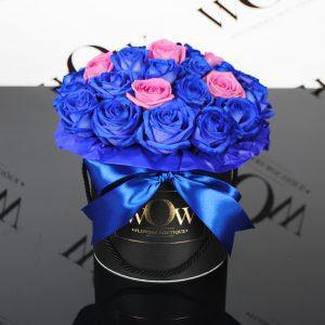 blue-aqua-wow-ajm
