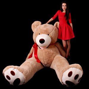 teddy-260cm