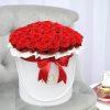 raudonos-rozes-luxury-1