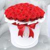 raudonos-rozes-luxury